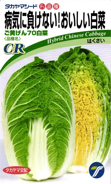 黄芯ハクサイ 種 『CRご黄げん70』 1dl タカヤマシード