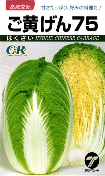 黄芯ハクサイ 種 『CRご黄げん75』 1dl タカヤマシード