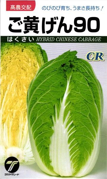 黄芯ハクサイ 種 『CRご黄げん90』 1dl タカヤマシード