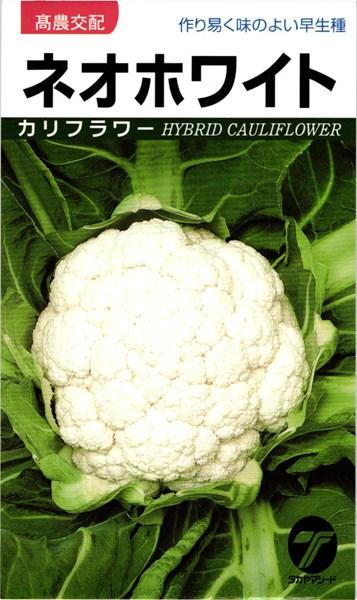 カリフラワー 種 『ネオホワイト』 20ml タカヤマシード