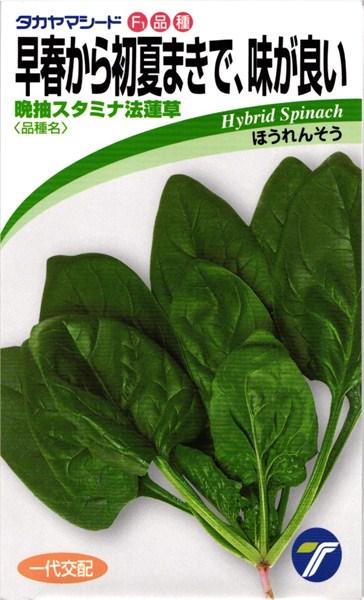ホウレンソウ 種 『晩抽スタミナ法蓮草』 1L タカヤマシード