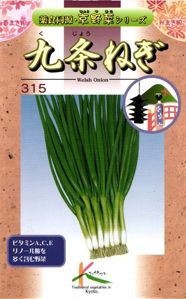 大好評です メール便 注目ブランド OK 京野菜 たね 種 タカヤマシード 九条ねぎ 15ml 小袋