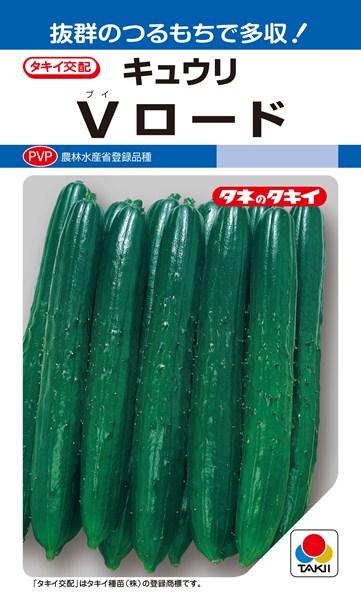キュウリ 種 『Vロード』 350粒 タキイ種苗
