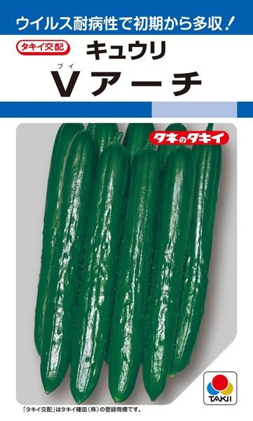キュウリ 種 『Vアーチ』 350粒 タキイ種苗