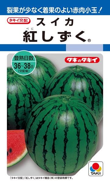 スイカ 種 『紅しずく』 200粒 タキイ種苗