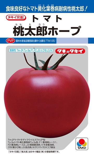 トマト 種 『桃太郎ホープ』 1000粒 タキイ種苗