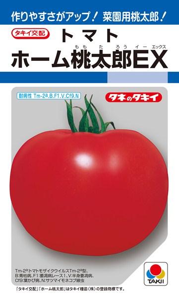 トマト 種 『ホーム桃太郎EX』 1000粒 タキイ種苗