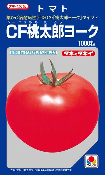 トマト 種 『CF桃太郎ヨーク』 ペレット2L1000粒 タキイ種苗