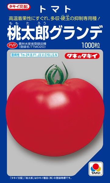 トマト 種 『桃太郎グランデ』 1000粒 タキイ種苗