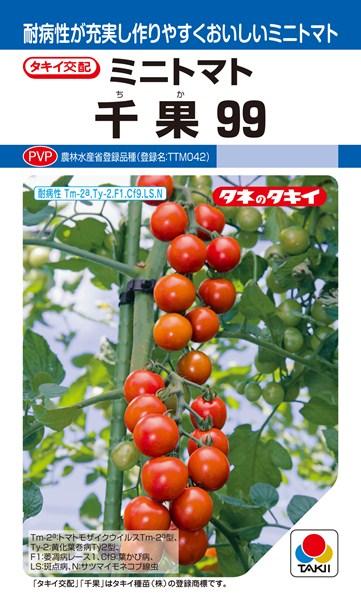 ミニトマト 種 『千果99』 1000粒 タキイ種苗