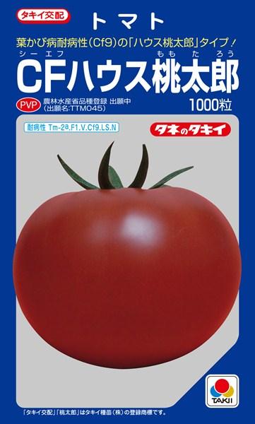 トマト 種 『CFハウス桃太郎』 1000粒 タキイ種苗