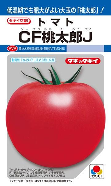 トマト 種 『CF桃太郎J』 1000粒 タキイ種苗