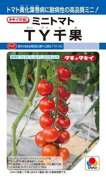 ミニトマト 種 『TY千果』 ペレット2L1000粒 タキイ種苗