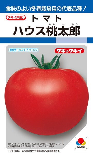 トマト 種 『ハウス桃太郎』 ペレット2L1000粒 タキイ種苗
