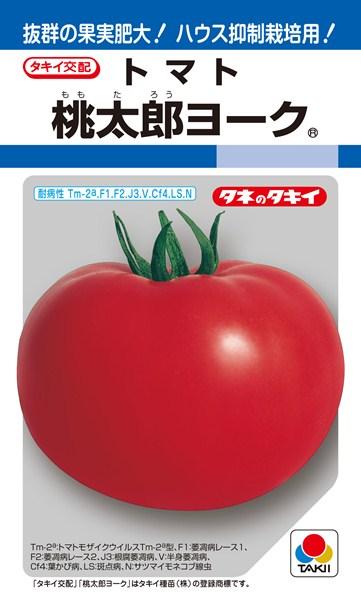 トマト 種 『桃太郎ヨーク』 ペレット2L1000粒 タキイ種苗