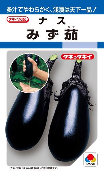 水ナス 種 『みず茄』 2000粒 タキイ種苗