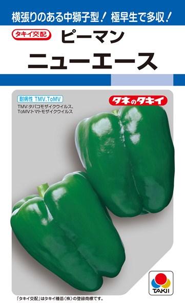 ピーマン 種 『ニューエース』 1000粒 タキイ種苗