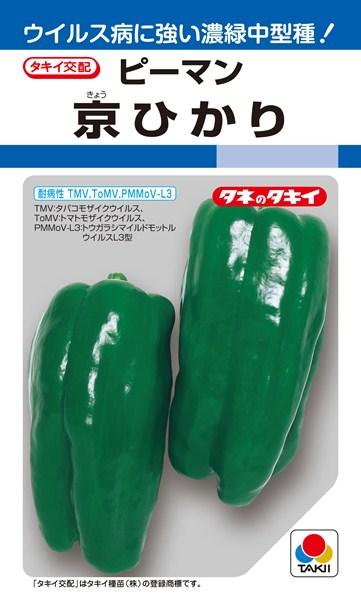 ピーマン 種 『京ひかり』 1000粒 タキイ種苗