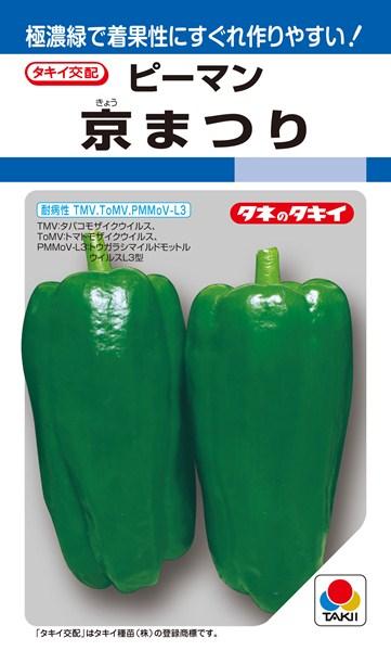 ピーマン 種 『京まつり』 1000粒 タキイ種苗