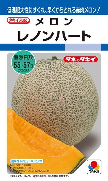 メロン 種 『レノンハート』 100粒 タキイ種苗