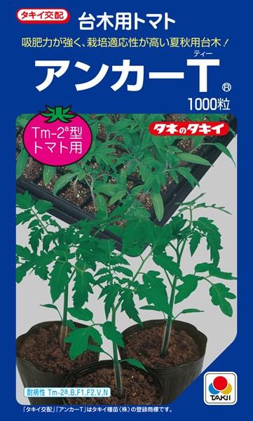 トマト台木 種 『アンカーT』 ペレット2L1000粒 タキイ種苗