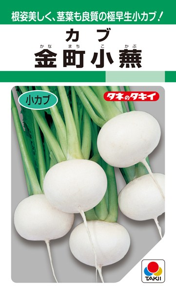 小カブ 種 『金町小蕪』 1L タキイ種苗