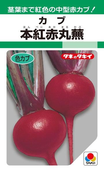 色カブ 種 『本紅赤丸蕪』 1L タキイ種苗
