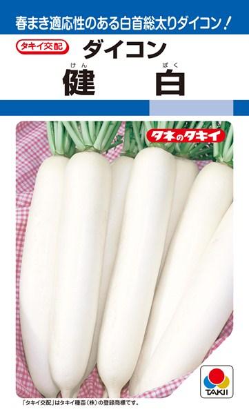 夏~秋どりダイコン 種 『健白』 2dl タキイ種苗