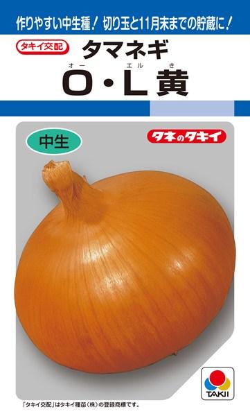 タマネギ 種 『O・L黄』 2dl タキイ種苗