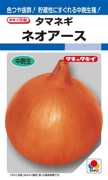 タマネギ 種 『ネオアース』 ペレット2L1万粒 タキイ種苗