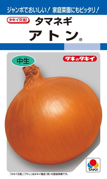 タマネギ 種 『アトン』 2dl タキイ種苗