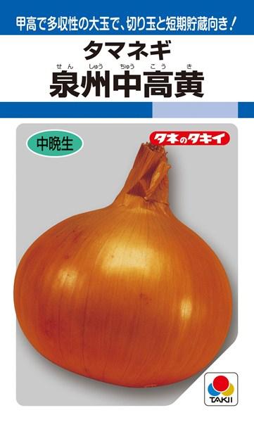 タマネギ 種 『泉州中高黄』 1L タキイ種苗