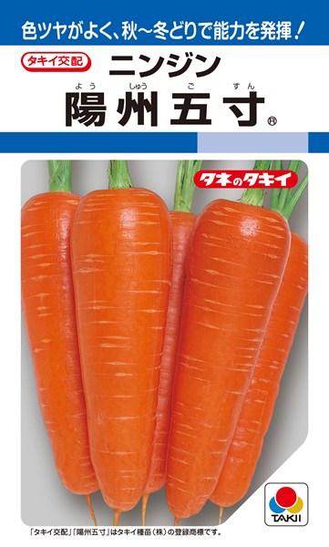 ニンジン 種 『陽州五寸』 1L タキイ種苗