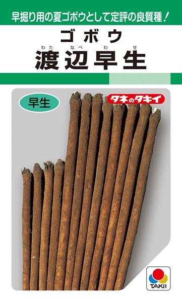 ゴボウ 種 『渡辺早生』 1L タキイ種苗