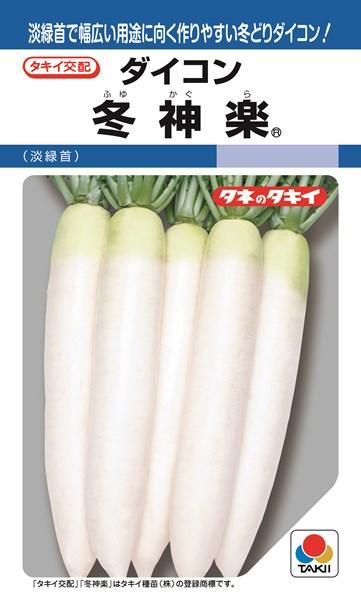 ダイコン 種 『冬神楽』 ペレット3L5000粒 タキイ種苗