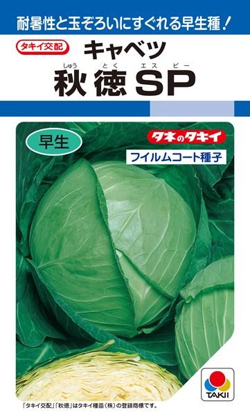 夏秋どりキャベツ 種 『秋徳SP』 ペレットL5000粒 タキイ種苗