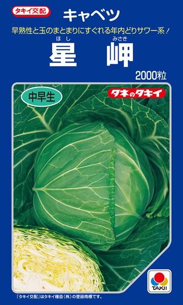 春系及び春キャベツ 種 『星岬』 2000粒 タキイ種苗