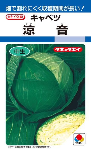 夏秋どりキャベツ 種 『涼音』 ペレットL5000粒 タキイ種苗
