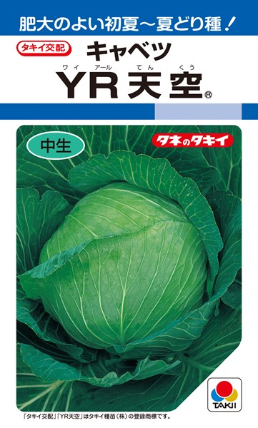 初夏どりキャベツ 種 『YR天空』 ペレットL5000粒 タキイ種苗