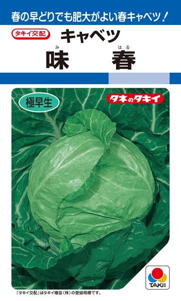 春系及び春キャベツ 種 『味春』 ペレットL5000粒 タキイ種苗