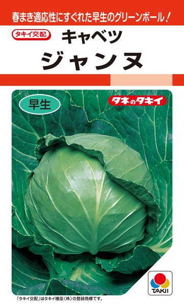 丸玉キャベツ 種 『ジャンヌ』 ペレットL5000粒 タキイ種苗