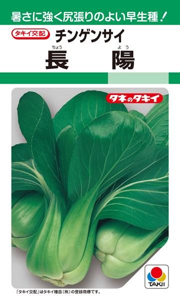 チンゲンサイ 種 『長陽』 2dl タキイ種苗