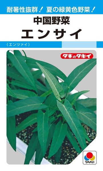 エンサイ(クウシンサイ) 種 『エンサイ(エンツァイ)』 1L タキイ種苗