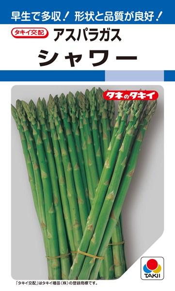 アスパラガス 種 『シャワー』 20ml タキイ種苗