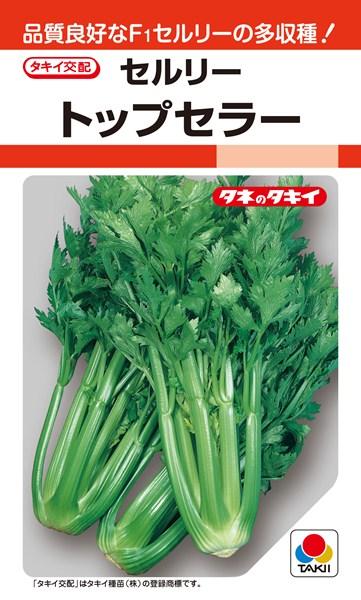 セルリー 種 『トップセラー』 20ml タキイ種苗