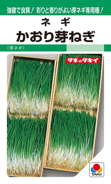 葉ネギ 種 『かおり芽ねぎ』 1L タキイ種苗