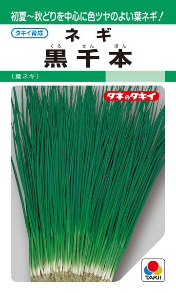 葉ネギ 種 『黒千本』 1L タキイ種苗
