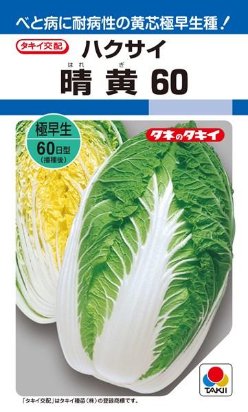 黄芯ハクサイ 種 『晴黄60』 ペレットL5000粒 タキイ種苗