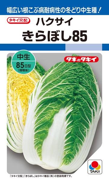 黄芯ハクサイ 種 『きらぼし85』 ペレットL5000粒 タキイ種苗