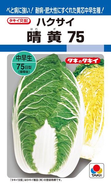 黄芯ハクサイ 種 『晴黄75』 ペレットL5000粒 タキイ種苗